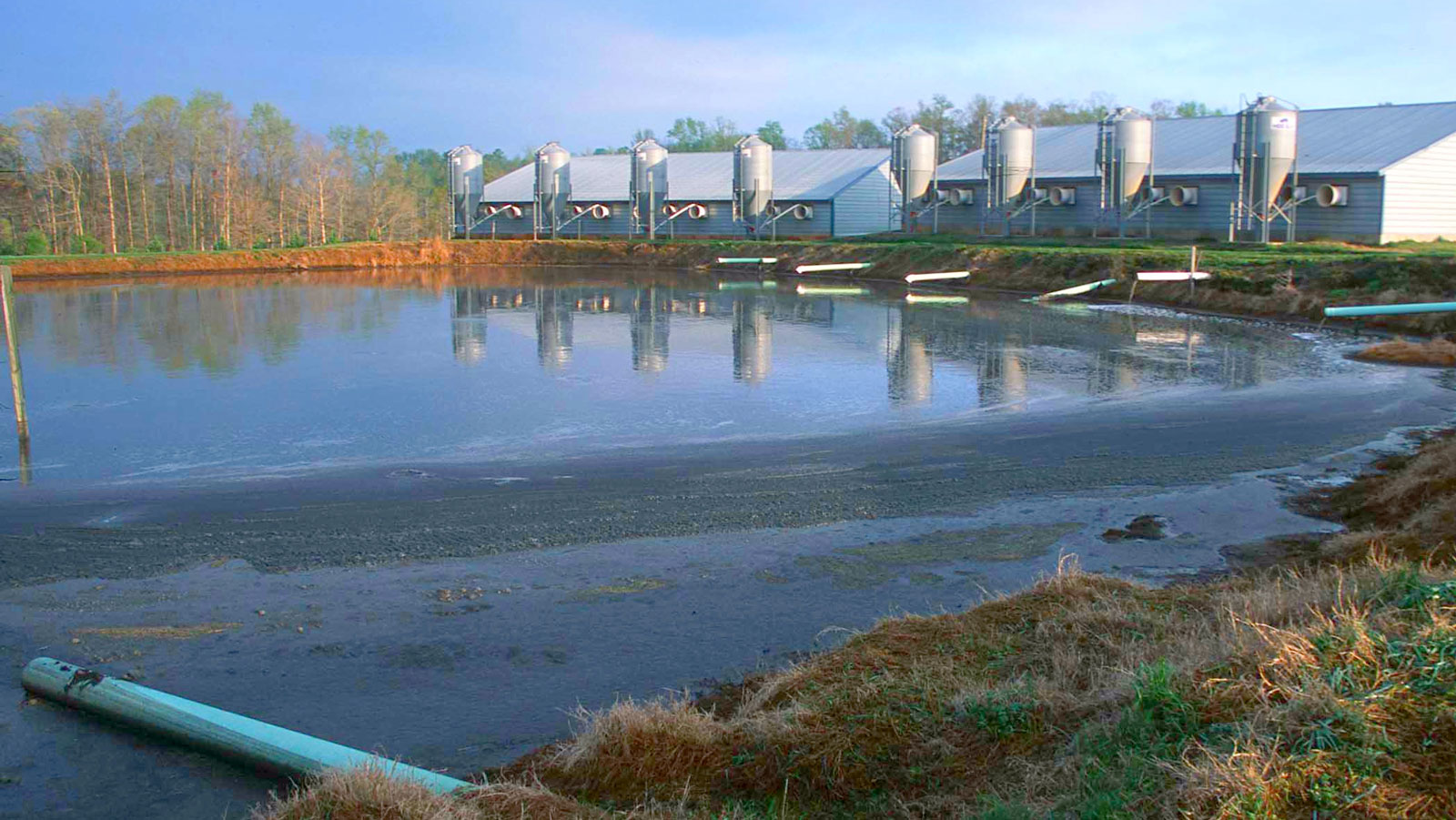 <h4>Animal waste lagoons</h4> <h5>In 2018, Hurricane Florence caused at least 32 hog waste lagoon overflows in North Carolina. And a study published in 2000 found that, from 1995 to 1998 in just 10 surveyed states, there were more than 1,000 animal waste spills that killed 13 million fish.</h5><em>Natural Resources Conservation Service Georgia</em>